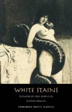 White Stains & The Nameless Novel