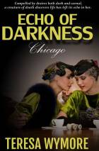 Echo of Darkness - Chicago by Teresa Wymore