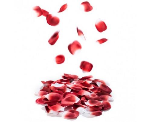 Bijoux Indiscrets - Rose Petal Explosion - Perfumed Petals