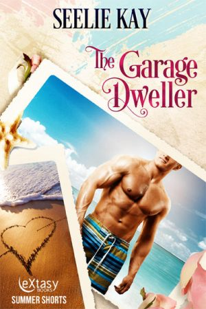 The Garage Dweller by Seelie Kay